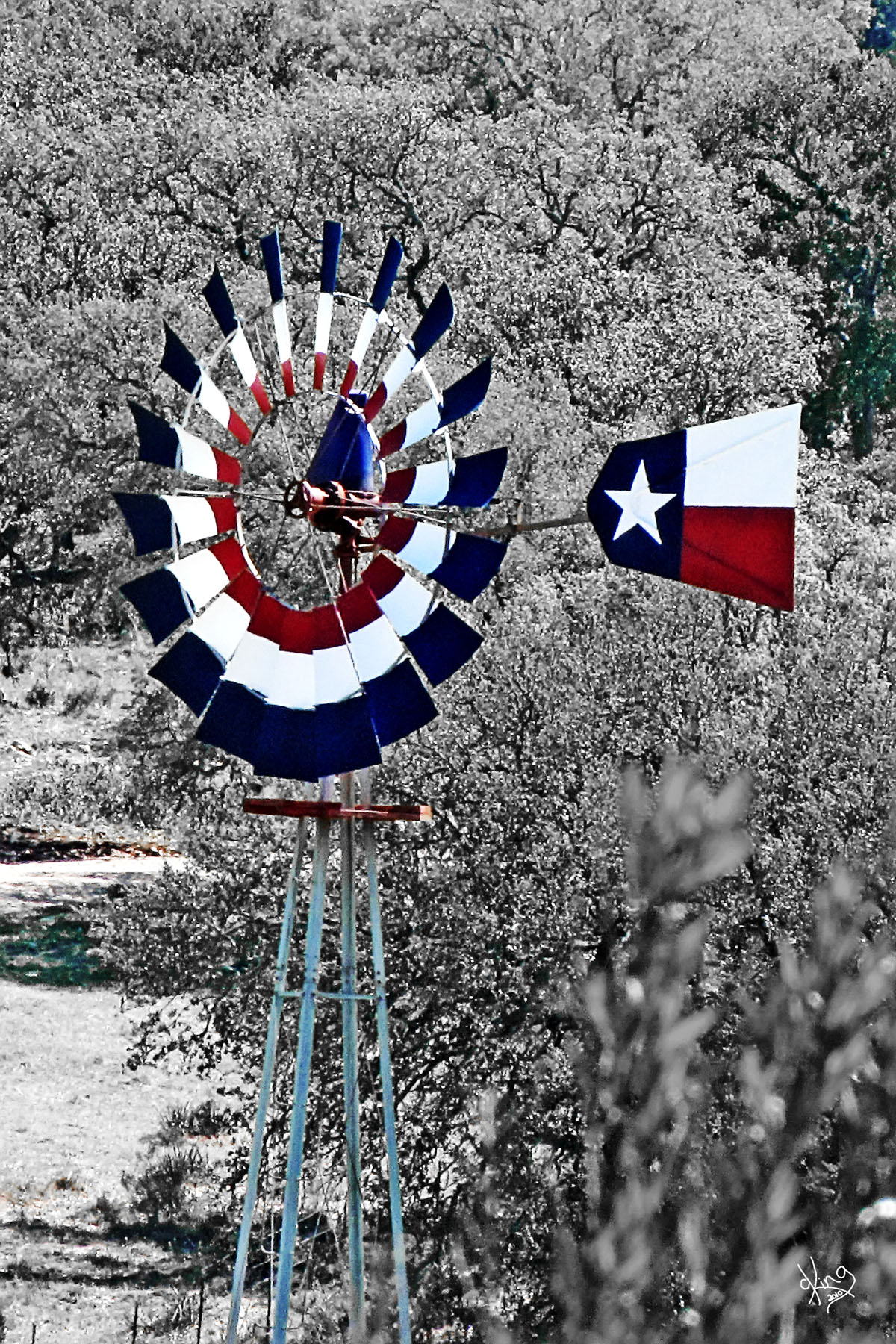 Texas Daytripper